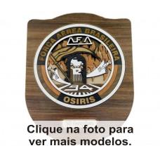 BRASÃO 3D